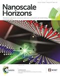 Nanoscale Horizons