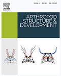 Arthropod Structure and Development