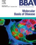 BBA – Molecular Basis of Disease