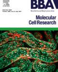 Biochimica et Biophysica Acta (BBA) – Molecular Cell Research
