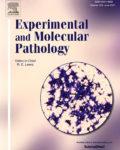 Experimental and Molecular Pathology