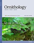 The Auk: Ornithological Advances