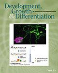 Development, Growth & Differentiation