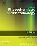 Journal of Photochemistry & Photobiology, B: Biology