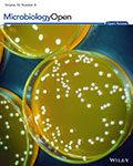 MicrobiologyOpen