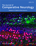 Journal of Comparative Neurology, The