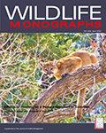 Wildlife Monographs