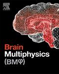 Brain Multiphysics